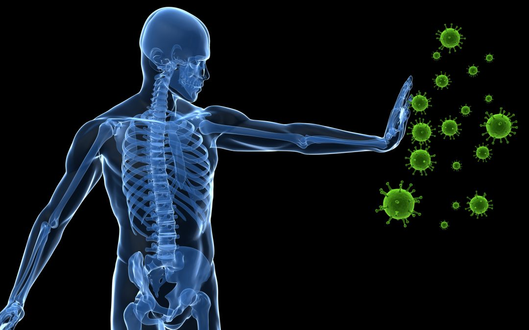 Four Simple, Natural Strategies to Improve Immunity